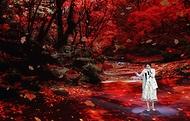 24일 인천 송도컨벤시아에서 열린 한국 마이스 박람회 개막식에서  가수 이영현이 축하공연을 하고 있다.