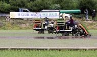 '벼 디지털농업 현장 연시회'가 열린 16일 전북 김제시 백산면의 현장실증포장에서 이양기가 모심기를 하고 있다.
