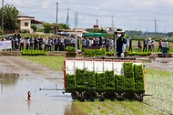 '벼 디지털농업 현장 연시회'가 열린 16일 전북 김제시 백산면의 현장실증포장에서 자율주행 이앙기가 모심기를 하고 있다.