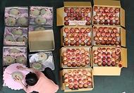 <p>추석 연휴를 이틀 앞둔 17일 오전 대전 유성구 노은농수산물도매시장 내 청과물시장에서 상인들이 과일을 포장하고 있다.</p>