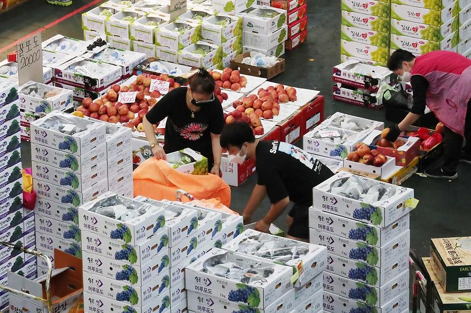 <p>추석 연휴를 이틀 앞둔 17일 오전 대전 유성구 노은농수산물도매시장 내 청과물시장에서 상인들이 과일 상자를 포장하고 있다.</p>