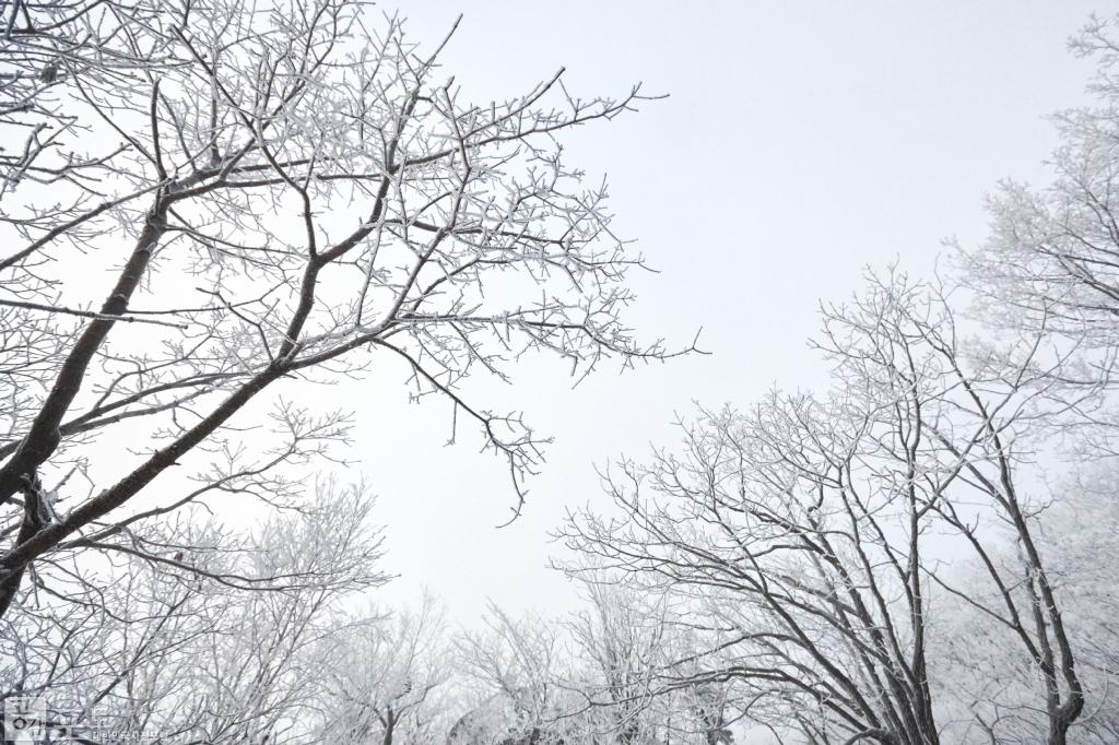 충북 단양과 경북 풍기 사이에 위치한 소백산 비로봉은 겨울 설산 트레킹의 성지로 꼽히고 있다. 무채색의 풍경이 마치 한 폭의 동양화 같다.