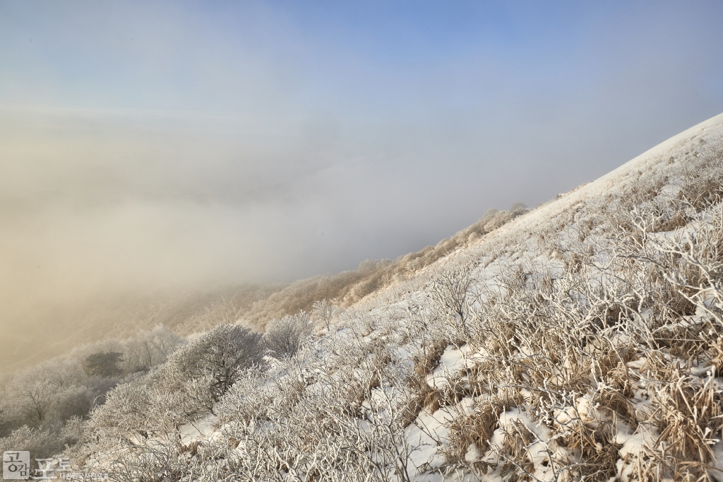 충북 단양과 경북 풍기 사이에 위치한 소백산 비로봉은 겨울 설산 트레킹 여행의 성지로 꼽히고 있다. 일출로 빛나는 눈꽃들.