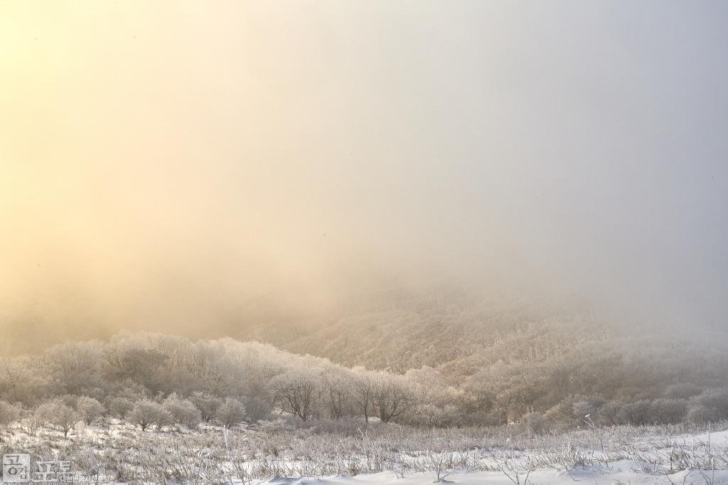 충북 단양과 경북 풍기 사이에 위치한 소백산 비로봉은 겨울 설산 트레킹의 성지로 꼽히고 있다. 일출 후에 빛이 퍼지고 있다.