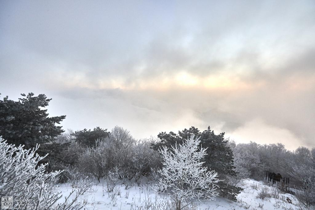 충북 단양과 경북 풍기 사이에 위치한 소백산 비로봉은 겨울 설산 트레킹의 성지로 꼽히고 있다. 매일 해가 떠오르지만, 그 모습은 늘 다르다.