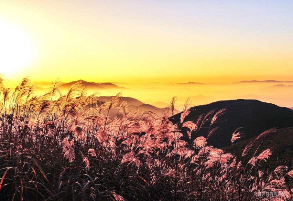 제16회 국립공원사진공모전 우수상 <무등산_입석대의 일출 / 심재환>