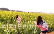 유채꽃으로 수놓은 인천공항 하늘정원