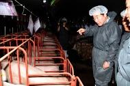 이낙연 국무총리가 9일 경기 안성의 한 양돈농장을 찾아 폭염 대비 상황 점검을 하고 있다.