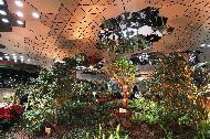 13일 서울 지하철 1호선 종각역과 이어진 지하보도에 지상의 태양광을 고밀도로 모아 지하로 전송하는 기술을 이용해 자연채광을 직접 받을 수 있는 정원으로 조성된 종각역 태양의 정원 개방 행사가 열렸다.
