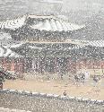 16일 서울, 경기 대설주의보가 내려진 가운데 경복궁에 눈이 내리고 있다.