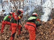 <p>19일 원주시 오크밸리 인근 야산에서 발생한 산불을 안전하게 진화하고 있다.</p>