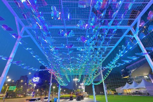 코엑스광장 '빛나는 동행' 나비터널 설치