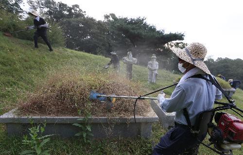농협, 벌초 대행 서비스