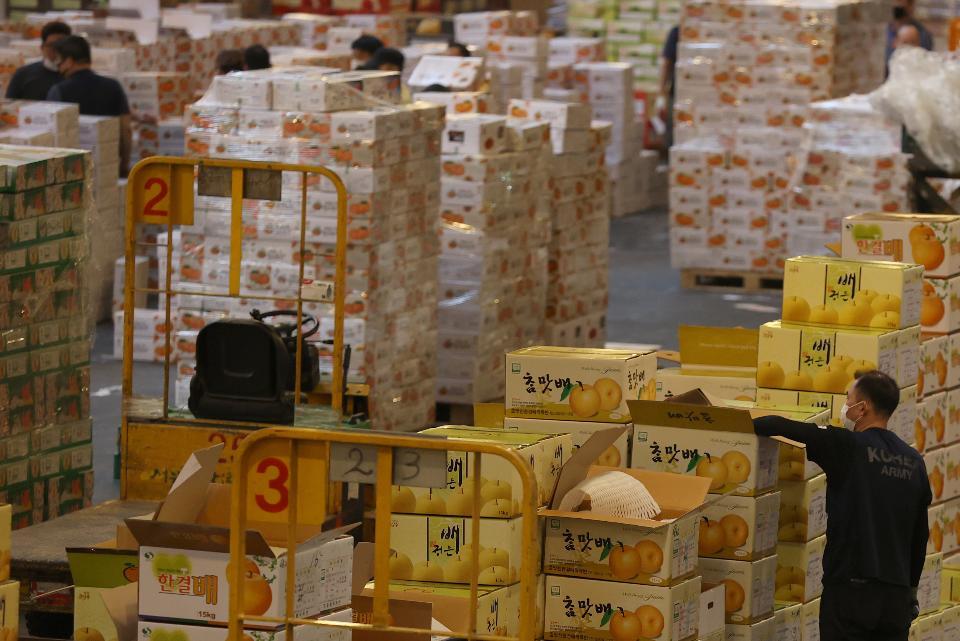 23일 추석을 일주일 여 앞두고 서울 송파구 가락동농수산물도매시장 과일경매장에 각 지역에서 올라 온 제철 과일들이 하역 작업을 마치고 경매를 하고 있다.