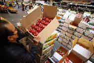 23일 추석을 일주일 여 앞두고 서울 송파구 가락동농수산물도매시장 과일경매장에 각 지역에어 올라 온 제철 과일들이 하역 작업을 마치고 경매를 하고 있다.