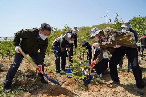 환경단체 및 산림생태복원단체와 함께하는 나무심기 행사 개최