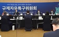 제6차 규제자유특구위원회
