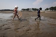 '한국의 갯벌'을 체험하다. 사진 9