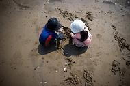 '한국의 갯벌'을 체험하다. 사진 12