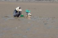 '한국의 갯벌'을 체험하다. 사진 5