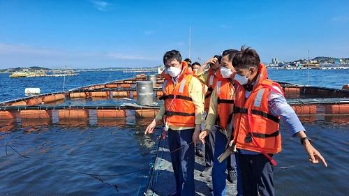 충남지역 고수온 대응 및 해수욕장 방역 점검