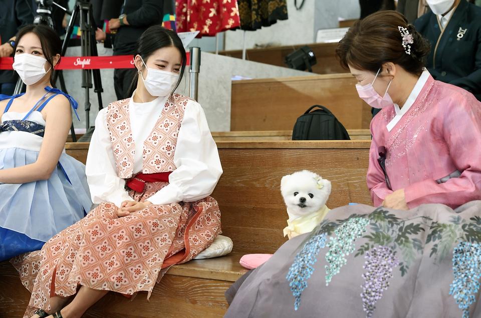 13일 서울 강남구 스타필드 코엑스몰에서 열린 한복사랑 감사장 수여식을 마친 브레이브걸스가 유투버 달리와 인사를 나누고 있다.
