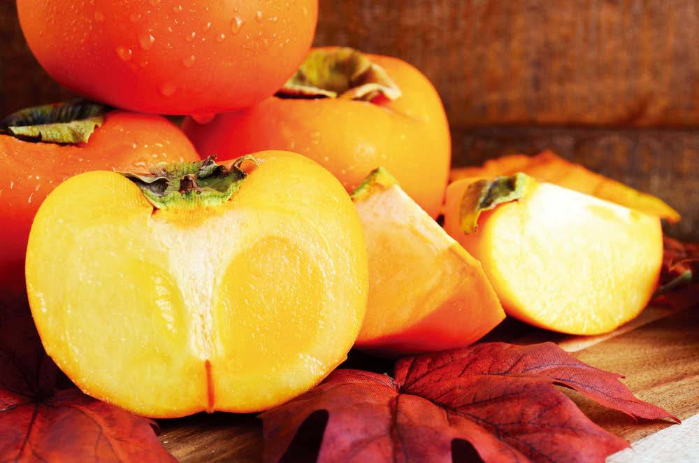 군침이 고이게 하는, 또 때로는 사랑스러울 정도로 예쁜 과일의 색깔을 식물학자들은 생존을 위한 진화의 산물로 여긴다