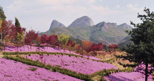 병풍처럼 두른 꽃산 원연장마을 걷기