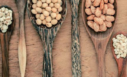 밥상도 삶도 자연스럽게 자연식 밥상