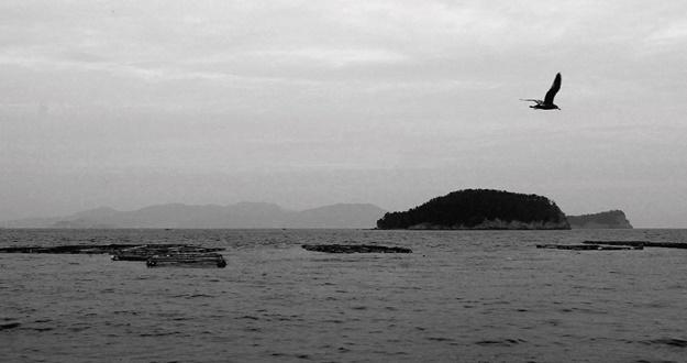 오롯이 걷다 보면 인문학의 바다가 열린다
