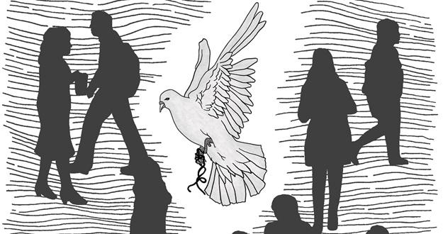 비둘기는 그냥 비둘기다