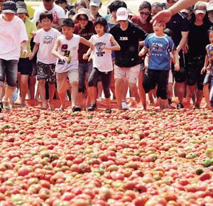 토고미마을 토마토축제