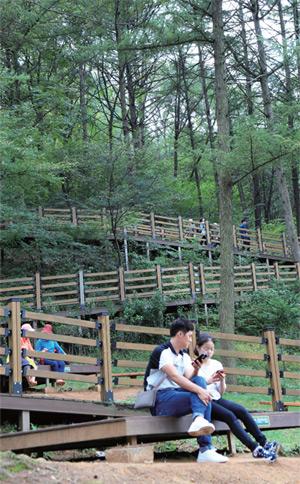 계족산 초입 나무 벤치와 데크길