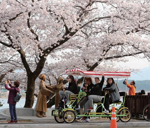경포호에서 봄을 만끽하고 있는 외국인 관광객