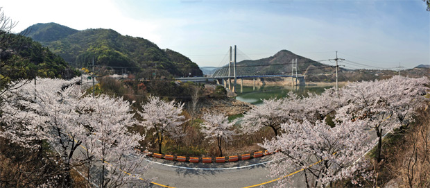 제천 청풍호벚꽃축제