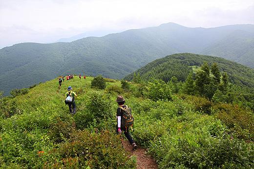 대덕산 초원길.