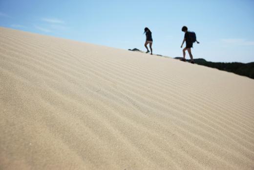 이국적 정취를 풍기는 옥죽동의 모래언덕.