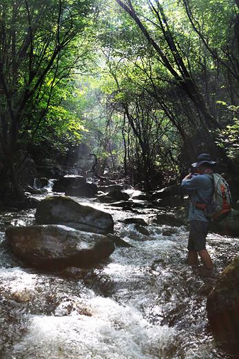 내변산 등산의 재미는 곳곳에서 크고 작은 계곡을 만날 수 있음이다.