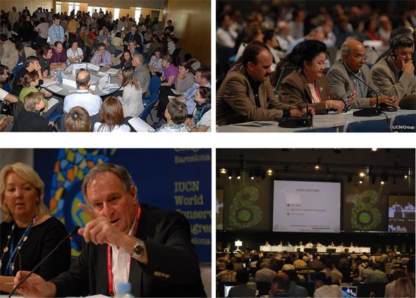 지난 2008년 스페인 바르셀로나에서 열린 세계자연보전총회의 모습들.
