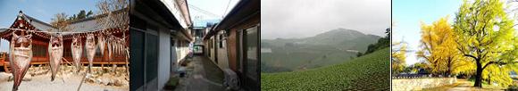 왼쪽부터 명품 해풍건정, 감포깍지길, 안반데기 마을, 은행마을.