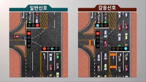 일반신호와 감응신호 비교 시뮬레이션 동영상 캡처, 감응신호는 교차로 이용차량의 신호대기를 최소화한다
