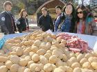 감자원정대 출발!…찾아가는 전통시장
