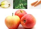 장건강에 좋은 음식 7가지