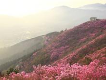 봄철 등산 제대로 즐기는 방법