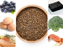 안구건조증 등 눈에 좋은 음식 7가지