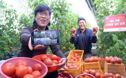 스마트 농업의 메카, 세종창조경제혁신센터 출범