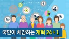 국민이 체감하는 핵심 개혁과제 24+1
