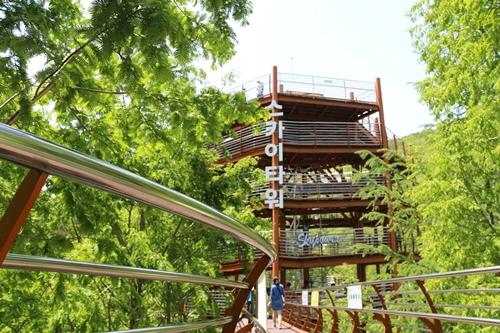 동양 유일의 높이 27m rlfdl 556m 숲체험 에코로드 스카이타워