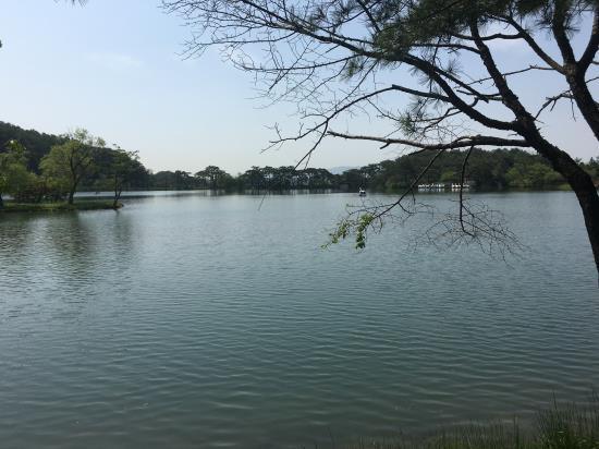 우리나라에서 가장 오래된 인공저수지 중 하나인 제천의 의림지는 현재에도 주변 농사에 물을 대는 유일한  저수지로 유명하다.