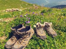 봄철 안전한 등산 위한 필수 상식